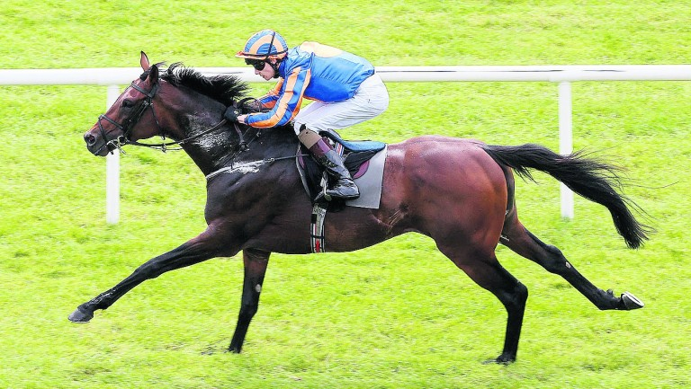 The 2016 Gold Cup hero Order Of St George will be bidding to regain the crown he lost to Big Orange last year at Ascot next month