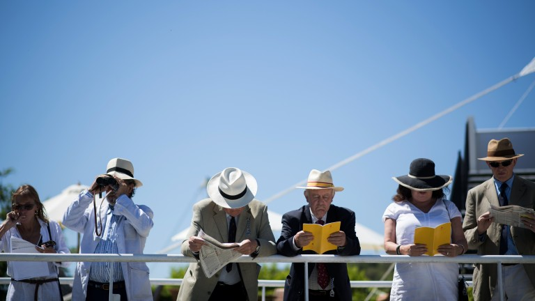 Blue skies: a second scorching day at the West Sussex track for racegoers