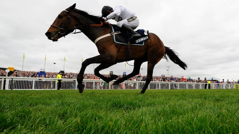 Beat That: dual Grade 1 winner over hurdles