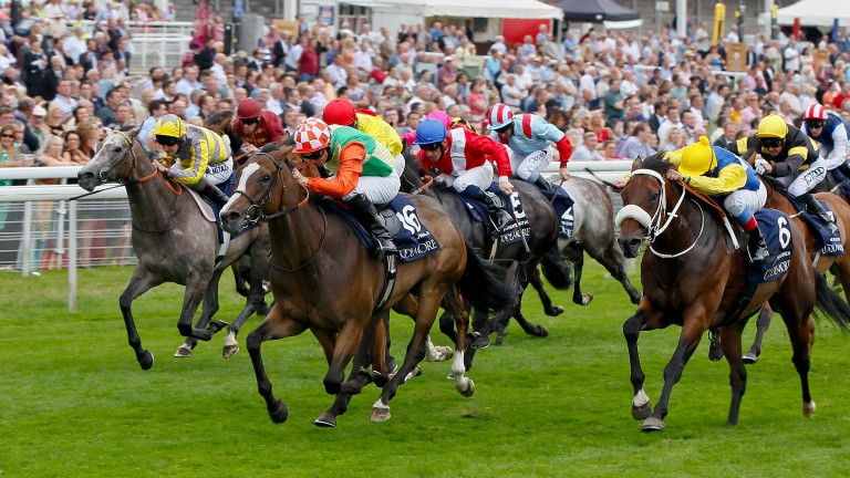 Jwala - Steve Drowne wins from Shea Shea - Frankie Dettori and Tickled Pink - Tom QueallyThe Coolmore Nunthorpe Stakes (British Champions Series) (Group 1)York 23/8/2013©Pic Mark Cranham