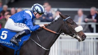 Aneen: pulled muscles in the Irish 1,000 Guineas