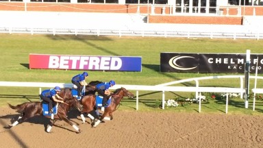 Best Solution just masters Dubai Thunder (far side) with Youmkin (near) in their Chelmsford gallop