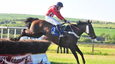 Anseanachai Cliste: a mystery withdrawal from the Cheltenham festival and reappears at Kelso