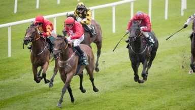 Gordon Lord Byron lands his tenth stakes race as he wins the Weatherbys Ireland Greenlands Stakes at the Curragh