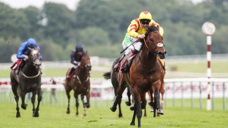 Harry Angel romps home in the Sandy Lane Stakes