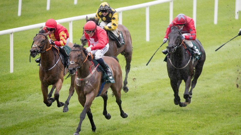 Gordon Lord Byron and Chris Hayes power to victory in the Greenlands Stakes