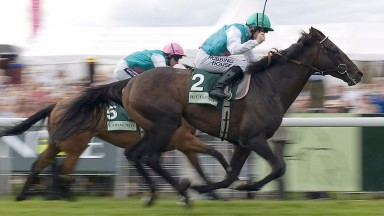 Twice Over: won two Champion Stakes and an Eclipse