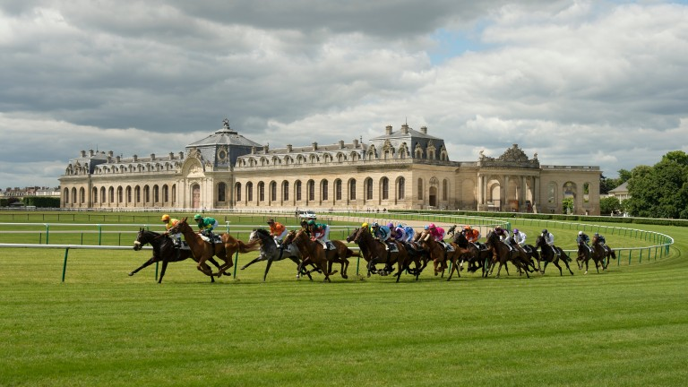 The field races around the bend at Chantilly against the backdrop of Les Grande Ecuries