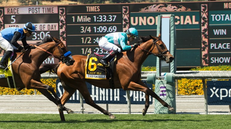 Lady Eli (Irad Ortiz) holds Goodyearforroses to claim the Gamely by a long-looking half-length