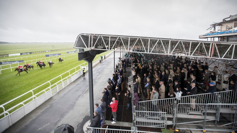 The Curragh: regarded as a sorry state of affairs for many this weekend
