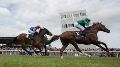 Andrea Atzeni gets ready to punch the air in triumph as Decorated Knight holds Somehow in the Tattersalls Gold Cup