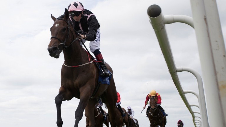 Royal Ascot aspirations: Commander Grigio bolts up in the opener to earn quotes for the Coventry Stakes