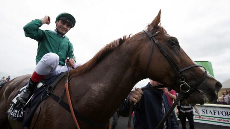 King for a day: Andrea Atzeni punches the air in delight after Decorated Knight wins the Tattersalls Gold Cup