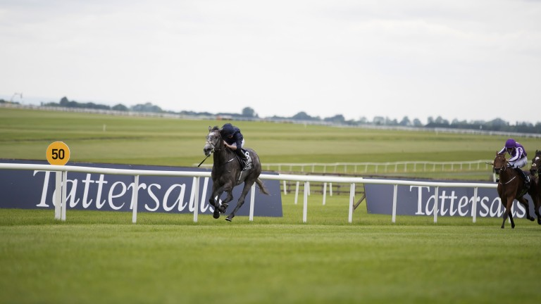 All alone: Winter storms home to win the Irish 1,000 Guineas and complete a Classic double