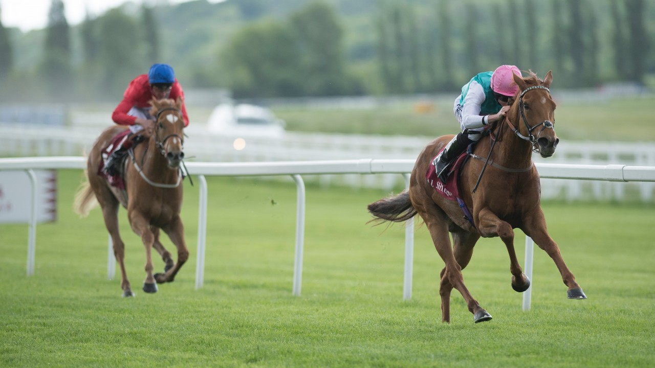 Two Oaks Contenders Give Nathaniel Every Chance Of Beating