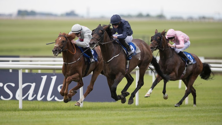 Homesman (centre) en route to winning the Gallinule Stakes at the Curragh in May last year