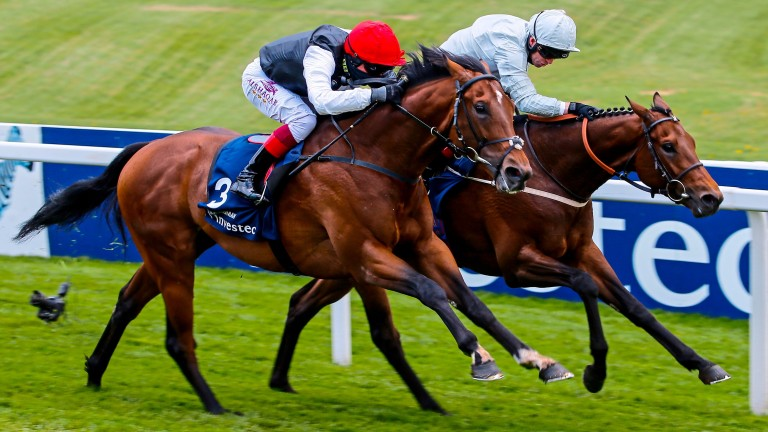Cracksman (near side) beats Permian in the Epsom Derby Trial, but how will the pair fare on Saturday?
