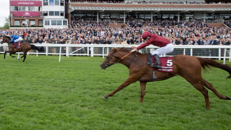 Lightning Spear (near side) finishes second to Ribchester in the Lockinge