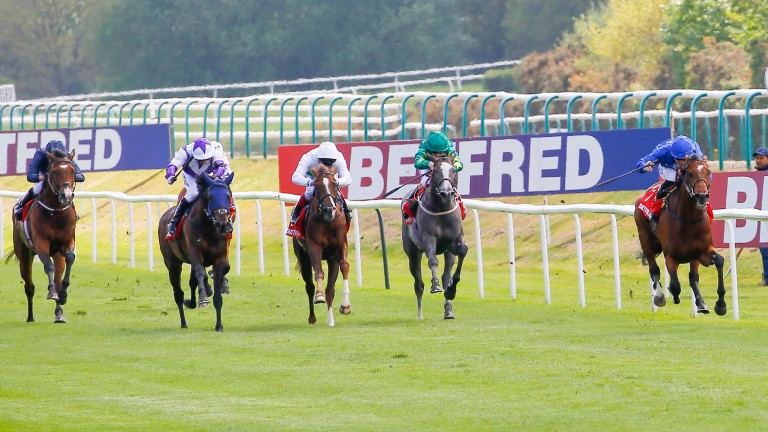 Lingfield Derby Trial: Glencadam Glory (blue hood, second left) chases home Godolphin's  Best Solution