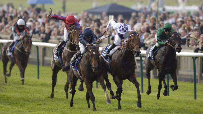 Teofilo: the first fruit of Jim Bolger's punt on Galileo beats Holy Roman Emperor, a son of Coolmore stalwart Danehill - and would soon open the back door to Galileo for Sheikh Mohammed