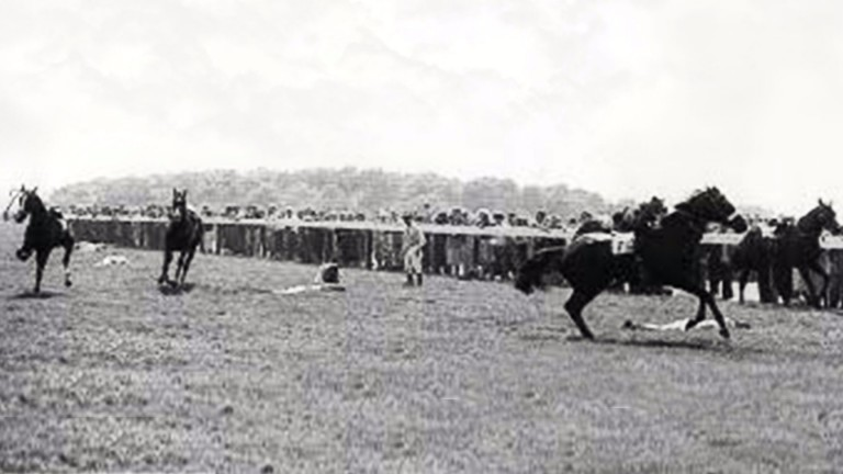 Mayhem in the 1962 Derby, won by Larkspur, with seven horses coming down. The stewards said so many horses had no right to be in the 26-strong field