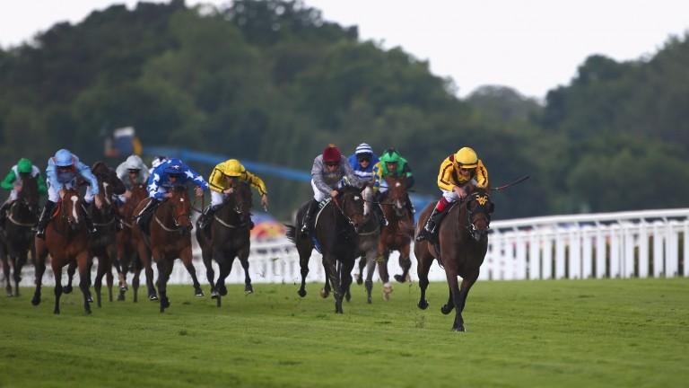 Lady Aurelia blitzes her rivals in last year's Queen Mary