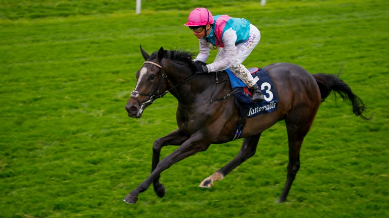 Shutter Speed: on course for Plan A, the Prix de Diane on June 18