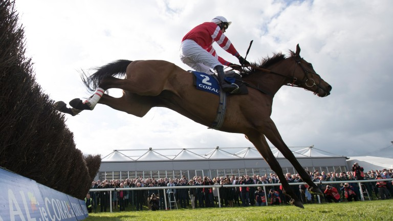 Coneygree: three options before a title at the Ladbrokes Trophy in December