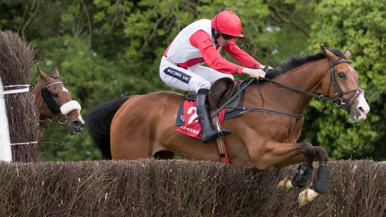 Sandymount Duke: his efficient jumping will be a big asset in the Galway Plate