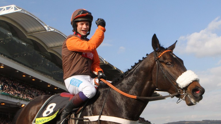 Long Run and Sam Waley-Cohen: brilliant winners of the Gold Cup