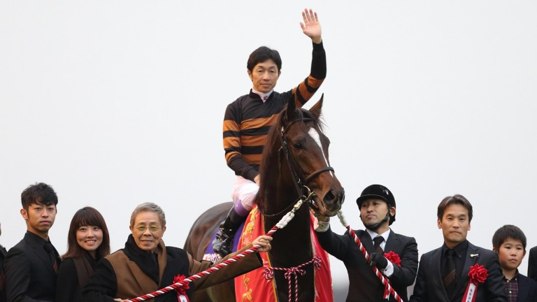 Yutaka Take salutes the crowd after Kitasan Black's victory in the 2016 Japan Cup