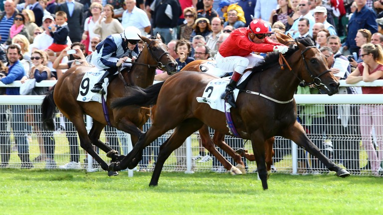 Garswood (red): stretching out to win the Prix Maurice de Gheest