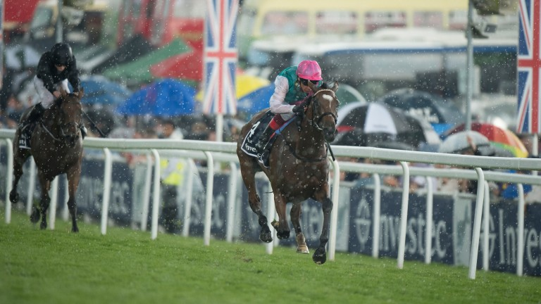 Rhododendron chases Enable home in the Oaks