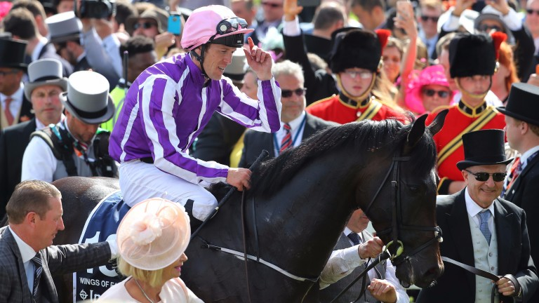 Padraig Beggy and Wings Of Eagles are the centre of attention after their Derby success