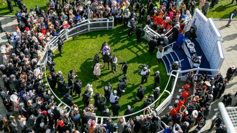 Wings of Eagles - Padraig Beggy winners lead in with Gaye Smith and Michael TaborThe Investec Derby (Group 1) (Entire Colts & Fillies)      Epsom  3/6/2017©cranhamphoto.com