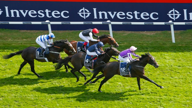 Wings Of Eagles swoops late to land the 2017 Investec Derby