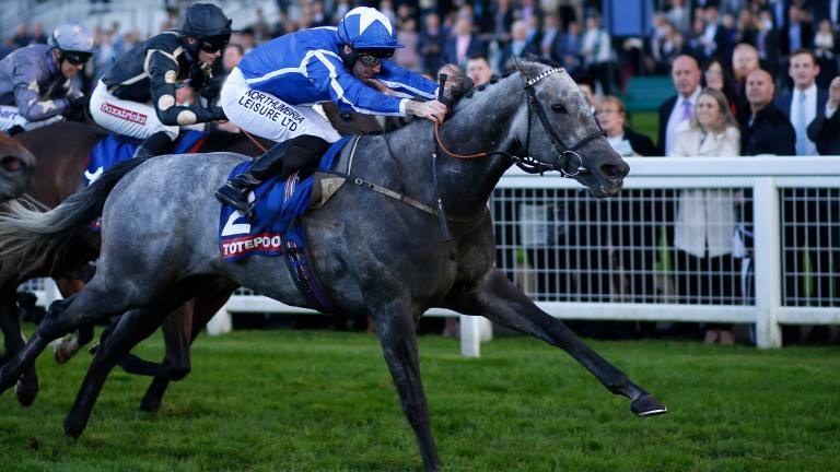 Librisa Breeze: can win the feature Hungerford Stakes at Newbury