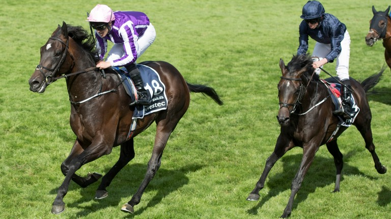 Wings Of Eagles: Derby winner could still have a say in Cartier Awards