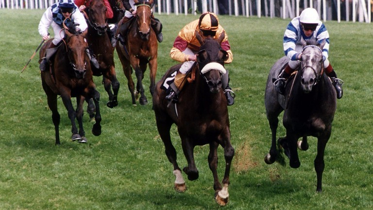 Indian Queen with Walter Swinburn (noseband) win the  1991 Gold Cup at Ascot