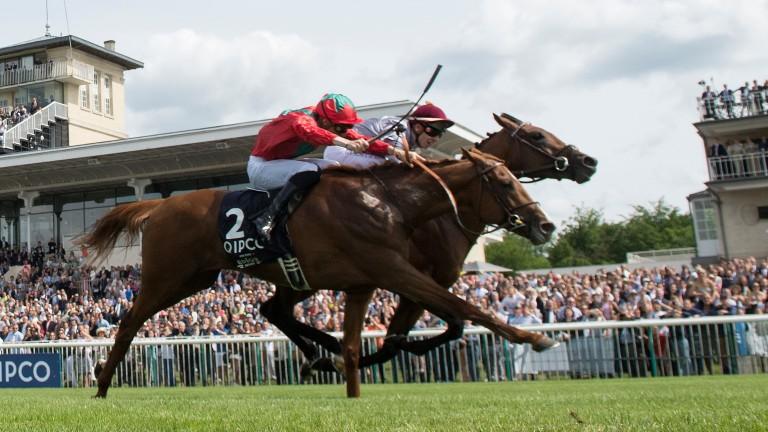 Waldgeist (red), just denied by Brametot in the Prix du Jockey Club, is a most welcome runner in the Irish Derby