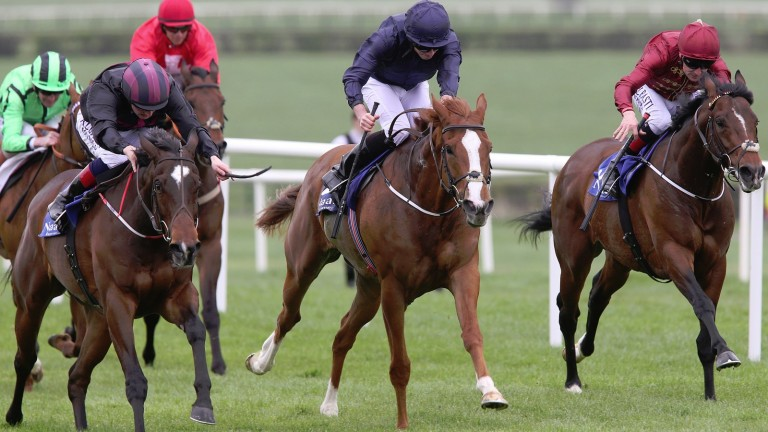 Diamond Fields (left) beats Alice Springs at Naas in April