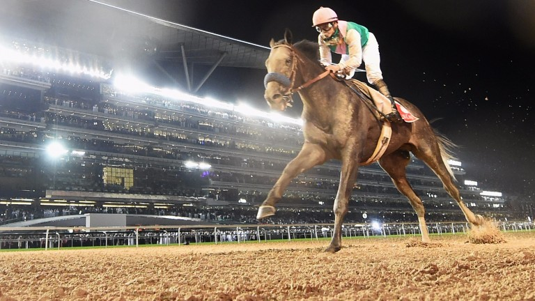 Arrogate, officially the best horse in the world, powers to victory in this year's Dubai World Cup. Joe Osborne's father Michael is credited with being the architect of the event