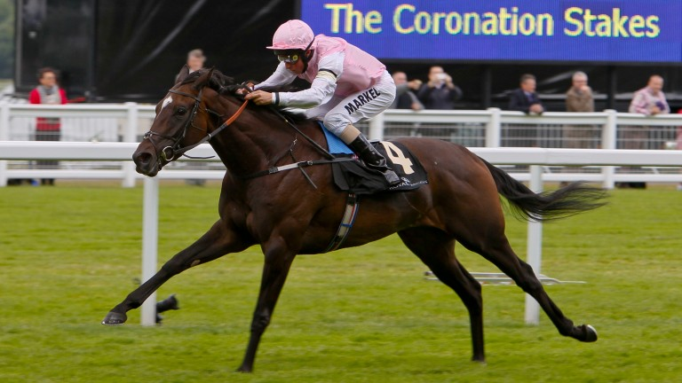 Fallen For You: dam of Glorious Journey wins the 2012 Coronation Stakes at Royal Ascot
