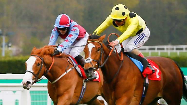 Ajman Princess bids to continue her upward curve at Haydock on Saturday