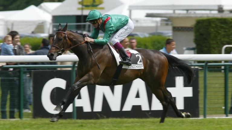 Vadawina: wins the 2005 Prix Saint-Alary at Longchamp