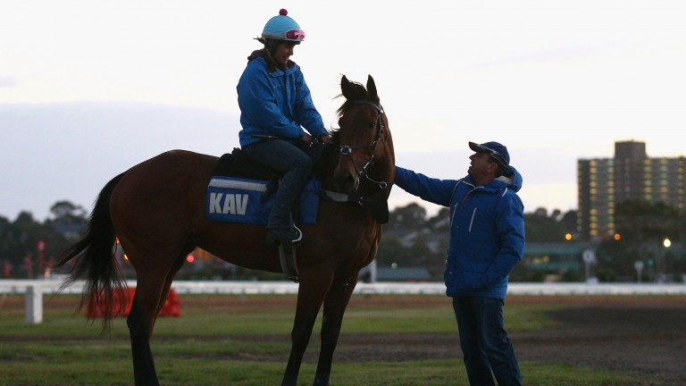 Mark Kavanagh and Super Cool