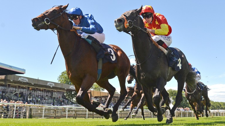 Glorious Journey (left) gets the better of Grand Koonta to make a winning debut