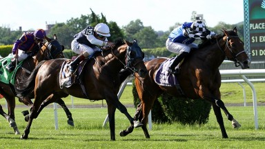 Red Cardinal and jockey Eduardo Pedroza get the better of St Michel in the Belmont Gold Cup