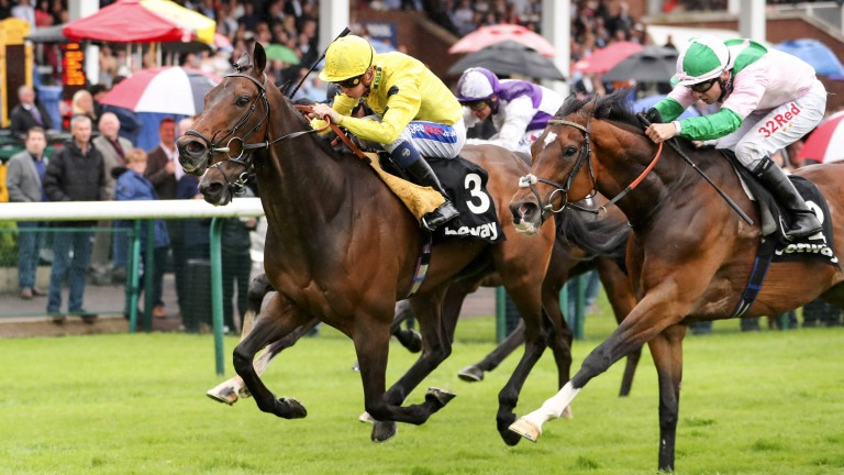 Absolutely fabulous: Absolutely So (yellow jacket) keeps on gamely to win the John Of Gaunt Stakes