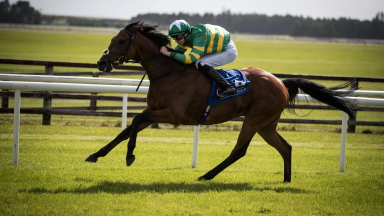 In full flow: Tigris River strides out well under Donnacha O'Brien to win the 2m handicap